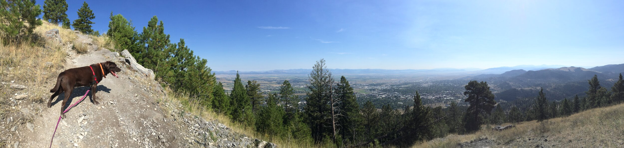 Near the summit, Mt. Helena, Powerline Trail, Helena, Montana