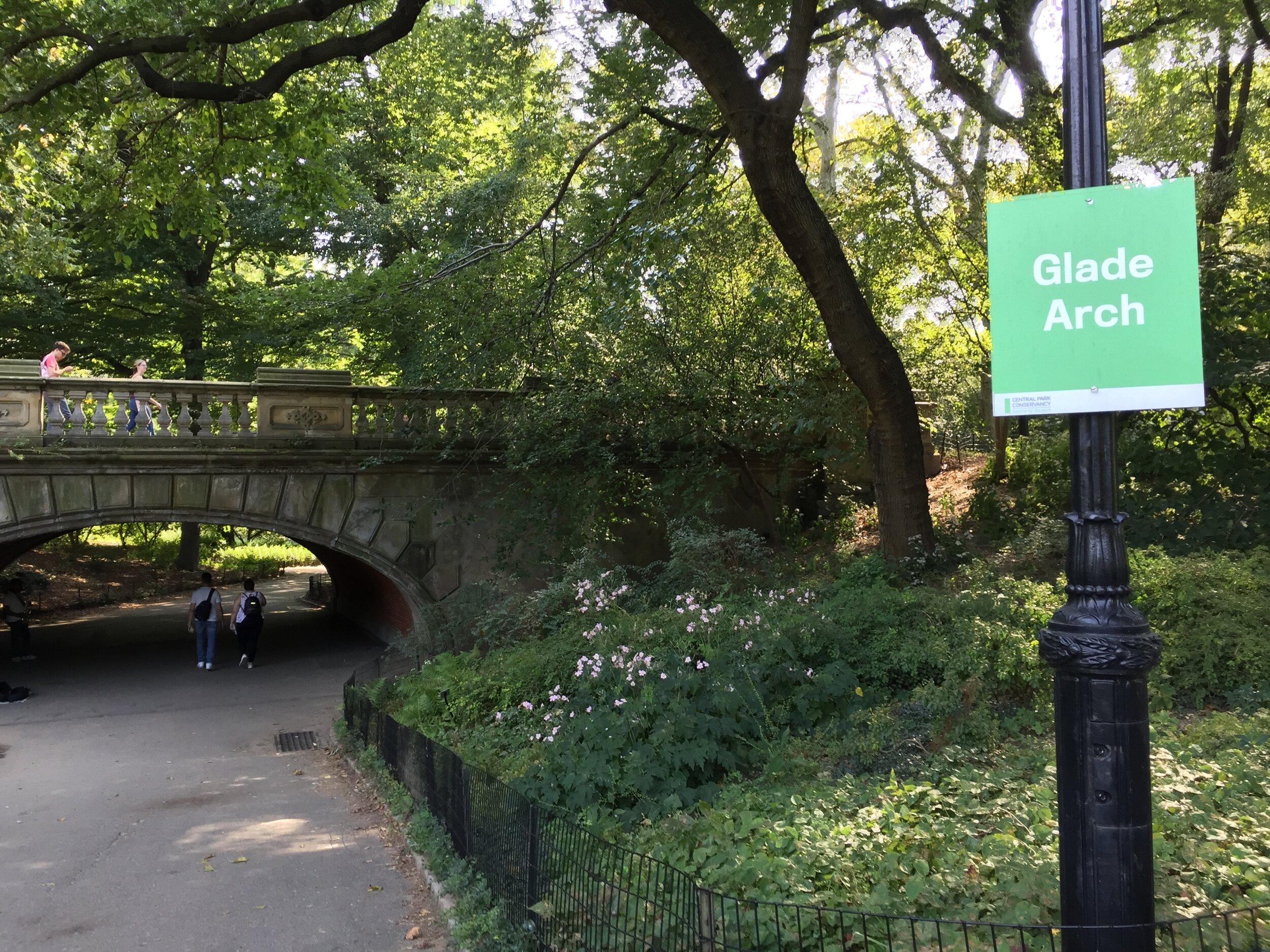 Central Park, September 22, 2019