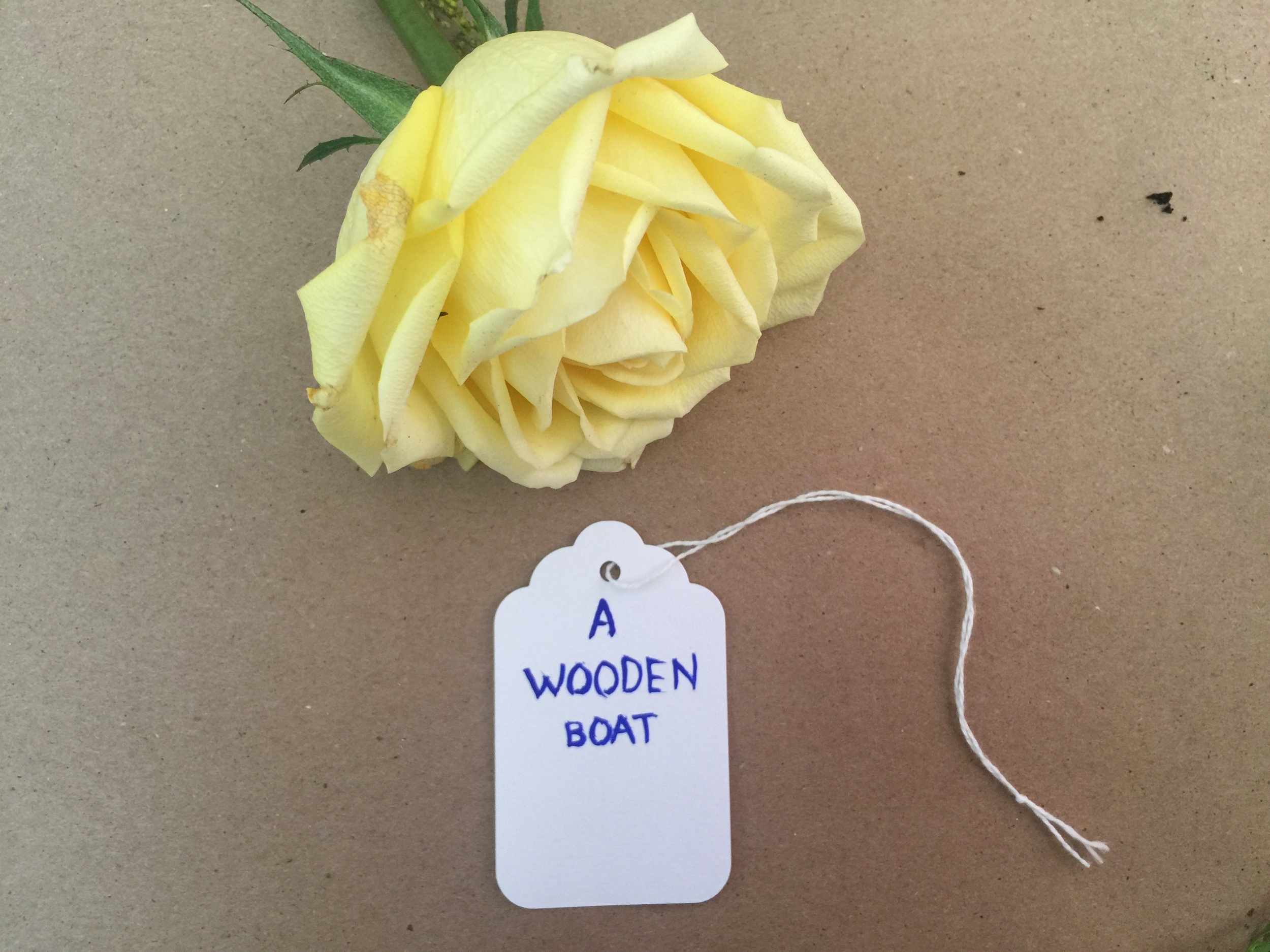 a wooden boat.jpg