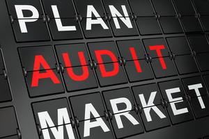 vonclaro marketing audit