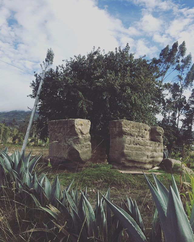 @andesmaterials lives in paradise. Salasaka is magical place, it's like time has been suspended in the present and wild times. #salasaka #ecuador #travel #sustainablefashion #whomademyclothes #womanempowerment #handmade #andes #tree