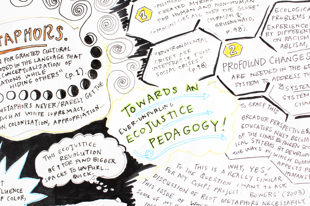 Towards an EcoJustice Pedagogy  (detail)
