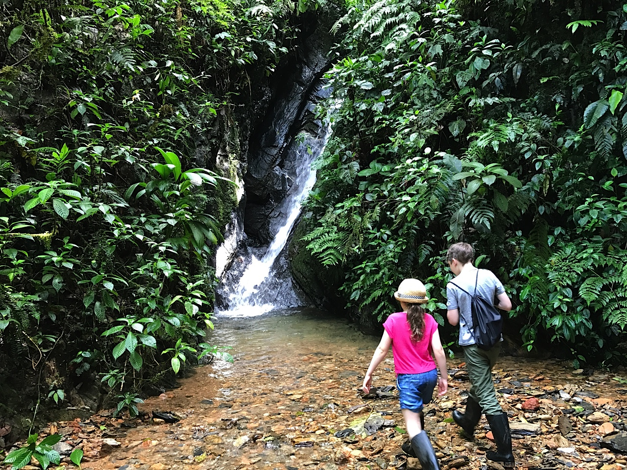 Discovering the Cloud Forest, Mashpi Lodge