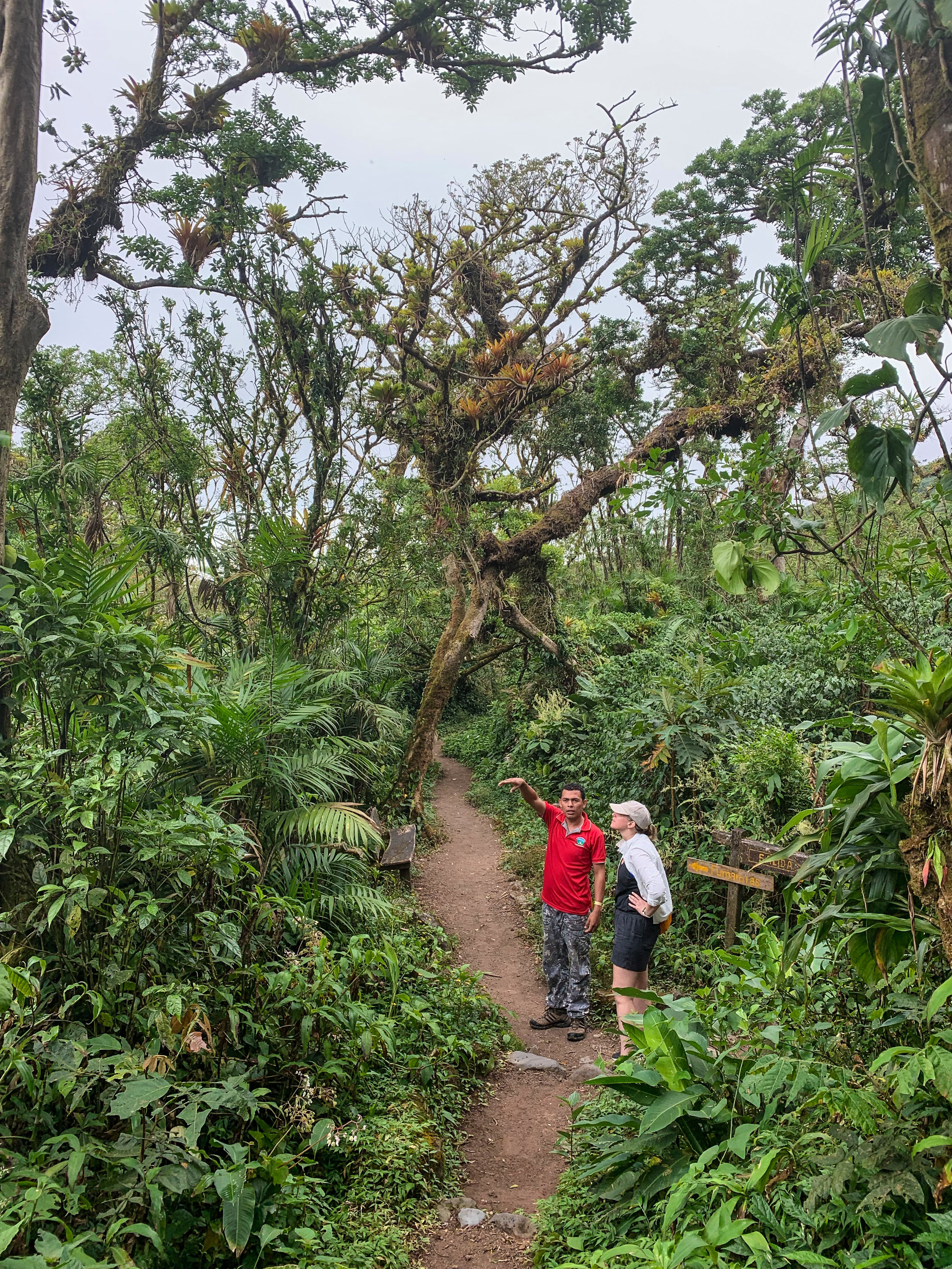 Exploring the cloud forests atop Mombacho Volcano
