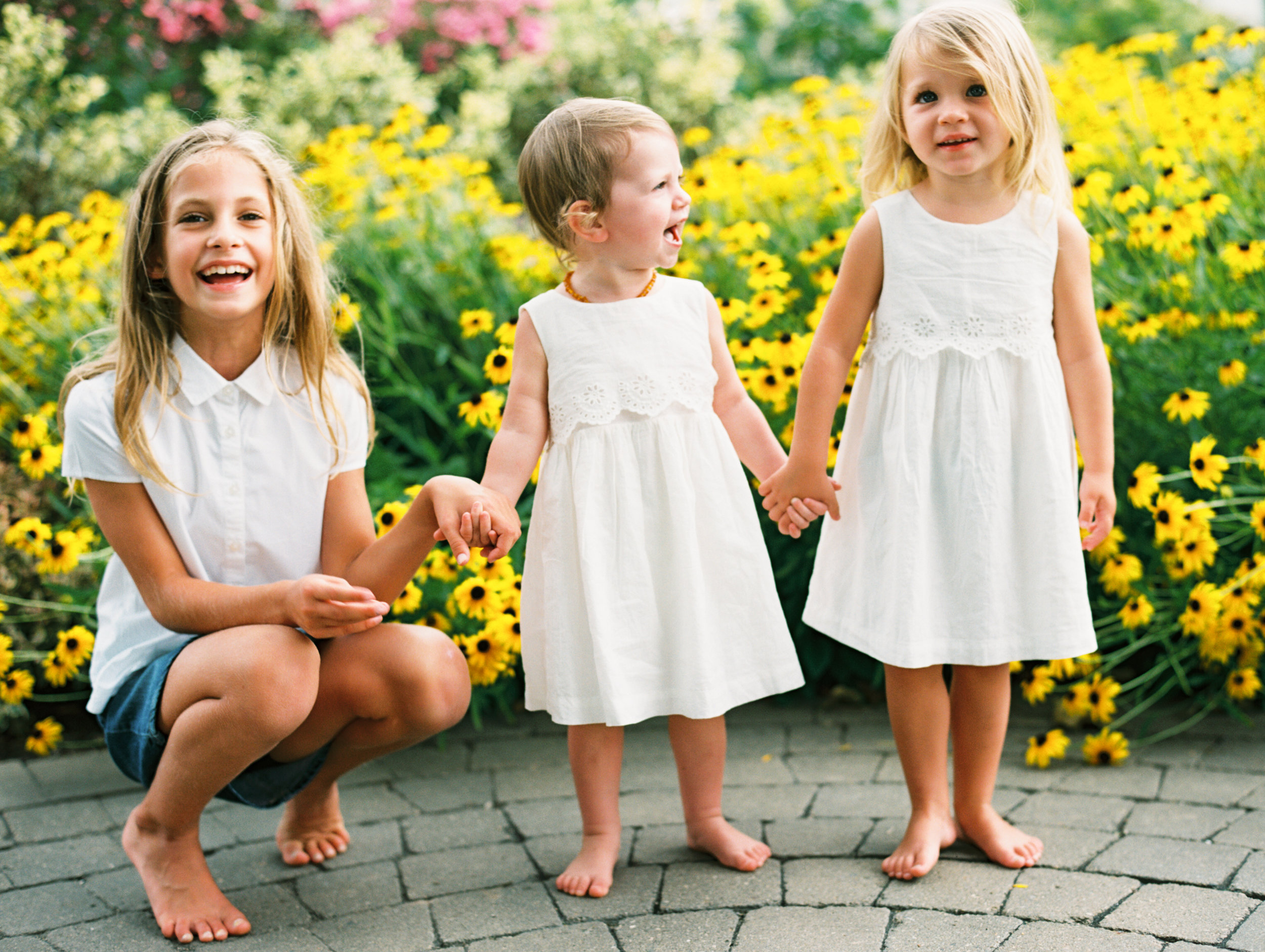 large family session saint charles illinois family photographer elgin film portra_4.jpg