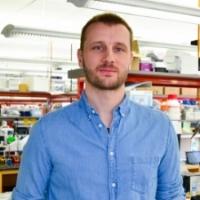 Tony Cijsouw, PhD  Founding Co-Chair, BPDA Advocacy Committee, 2017-2018  Postdoctoral Scholar, Tufts University