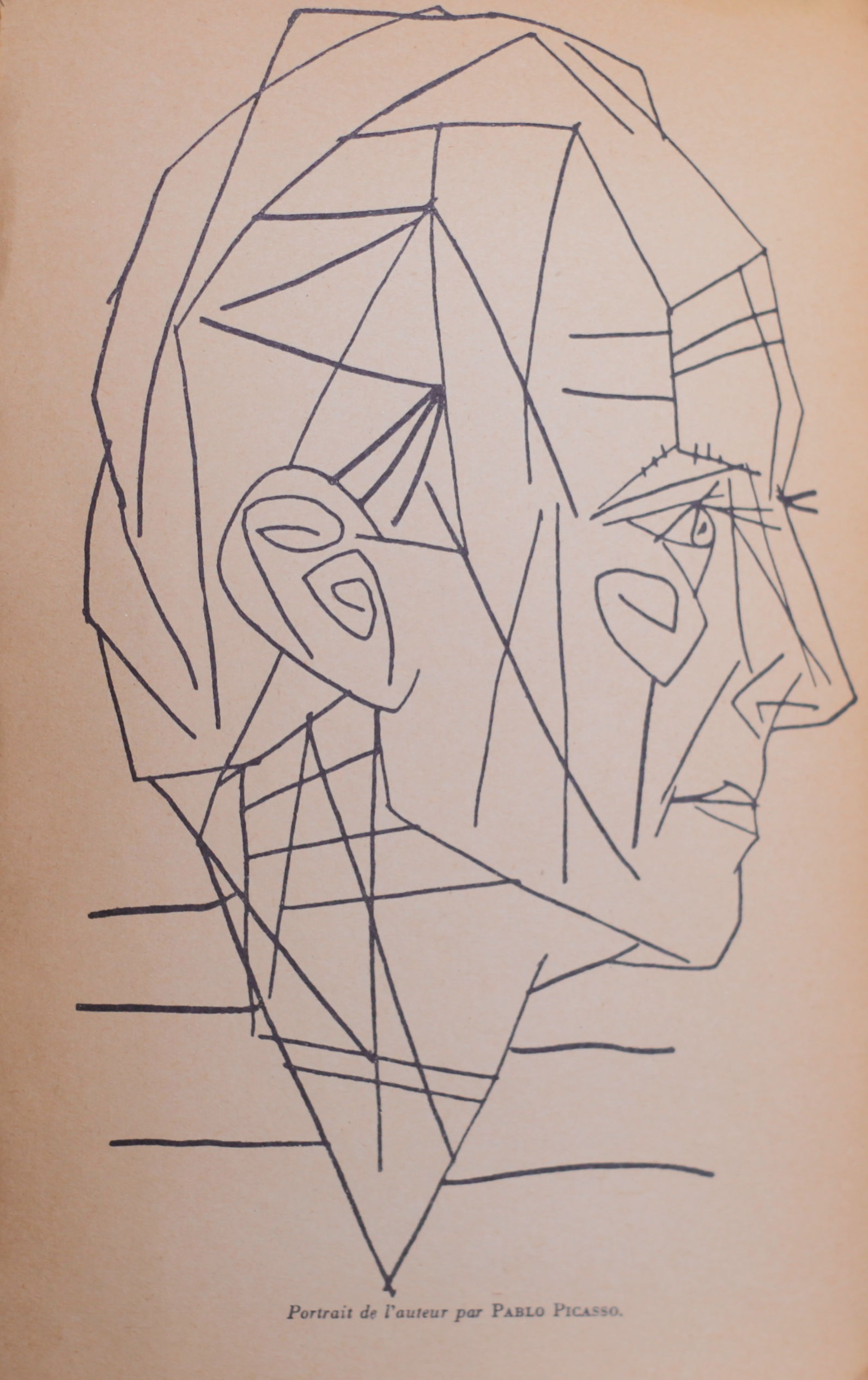 The Picasso frontispiece