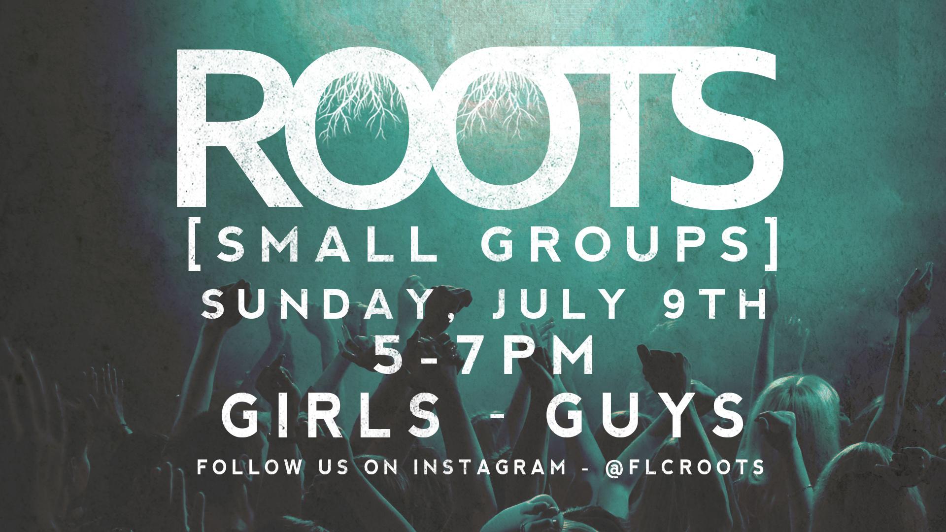 Roots_Smallgroups_bul.jpg