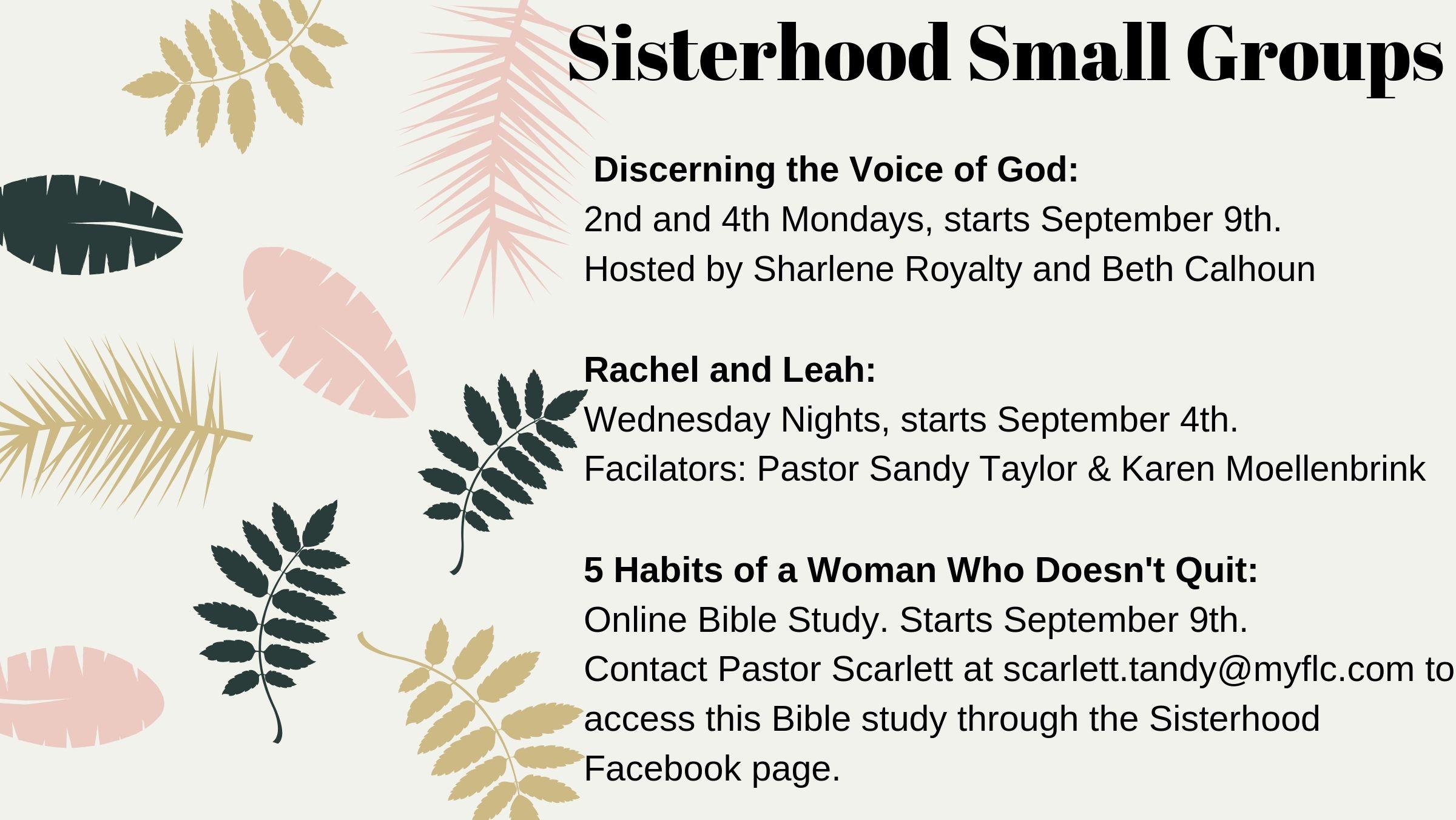 Copy of Sisterhood Small Groups.jpg