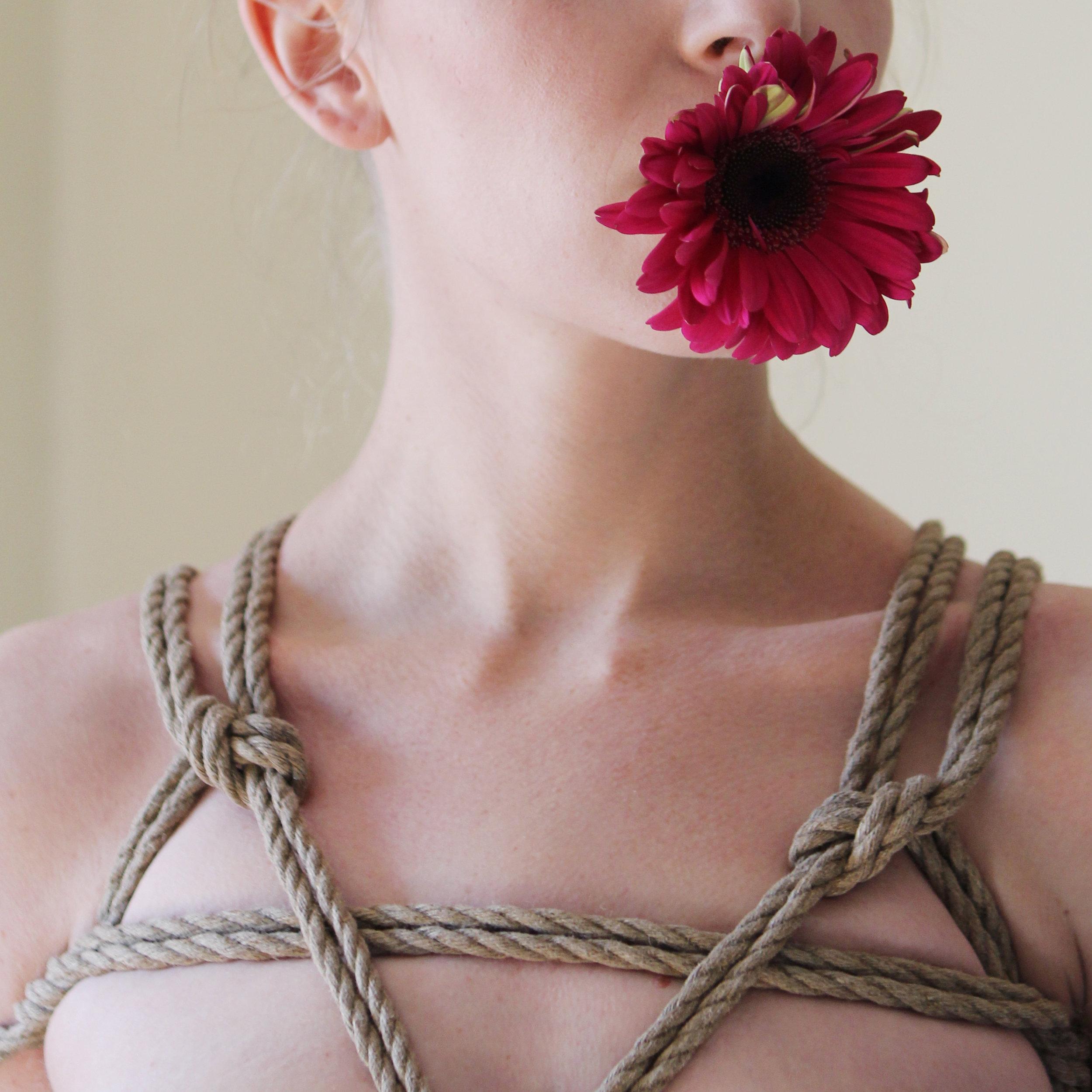 lilly (1).jpg