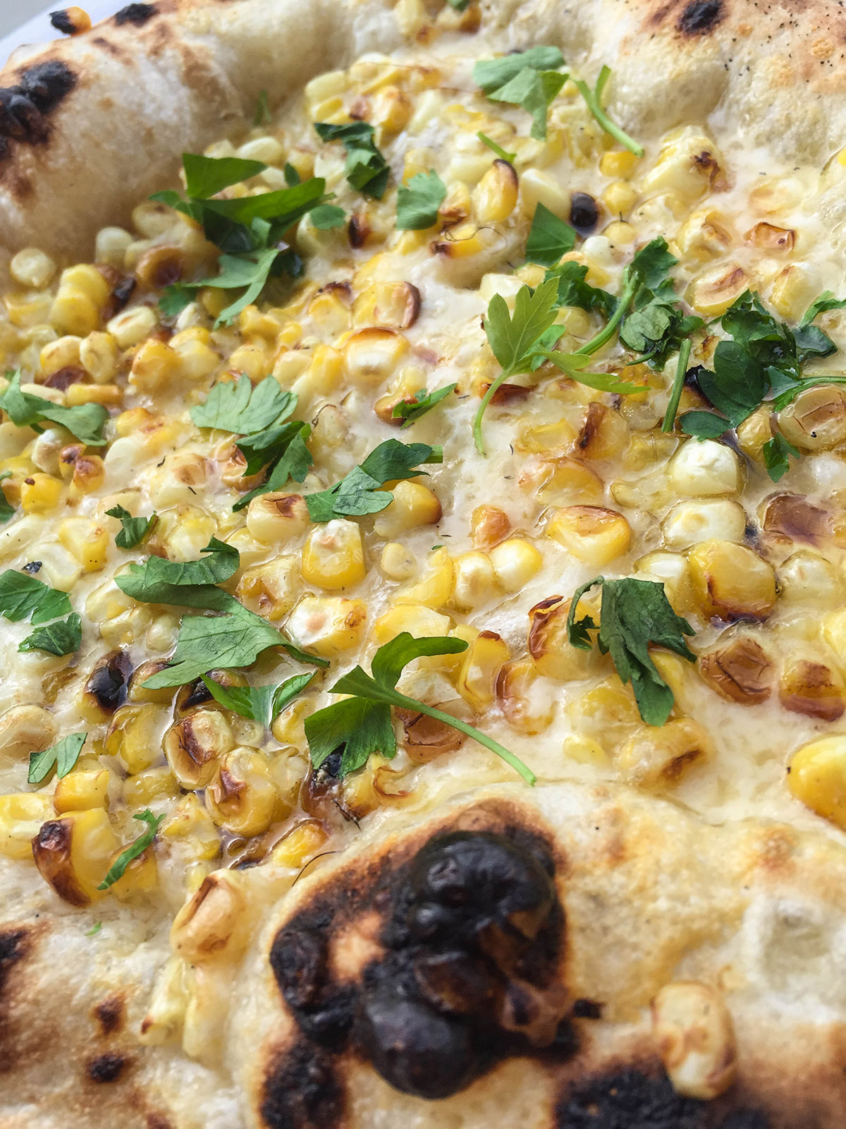 The one and only Corn and Cheddar Perfect Summer Pie.
