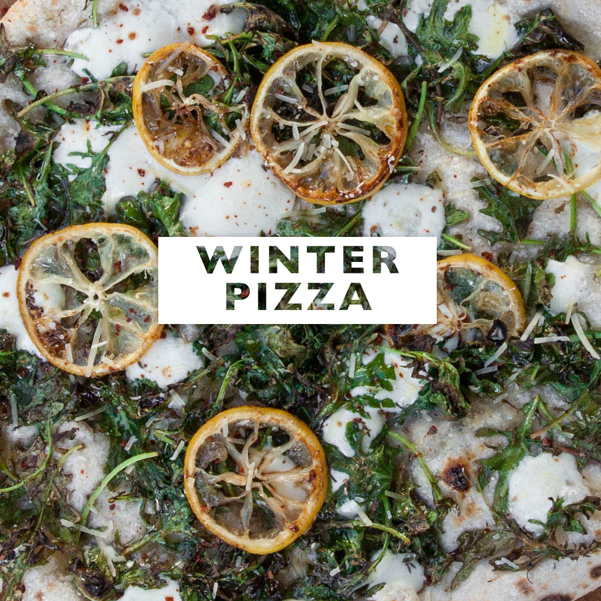 Click here to find all Zaza's Perfect Winter Pies