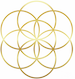 Flower Of Life White copy.png