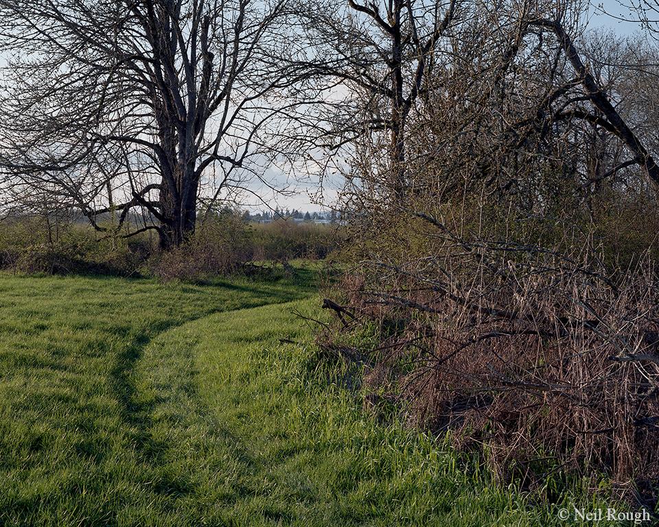 BF 2011 OR Hillsboro Sanctuary.jpg