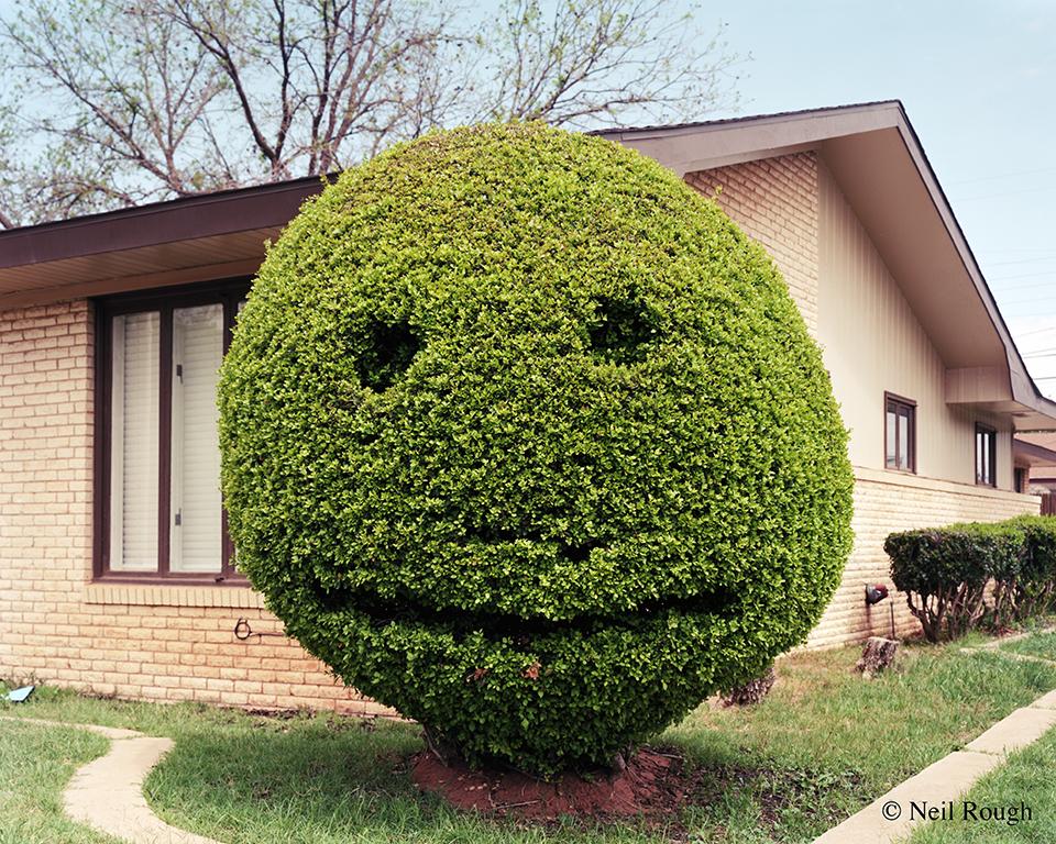 TX Lubbock Smiley Face 2013.jpg
