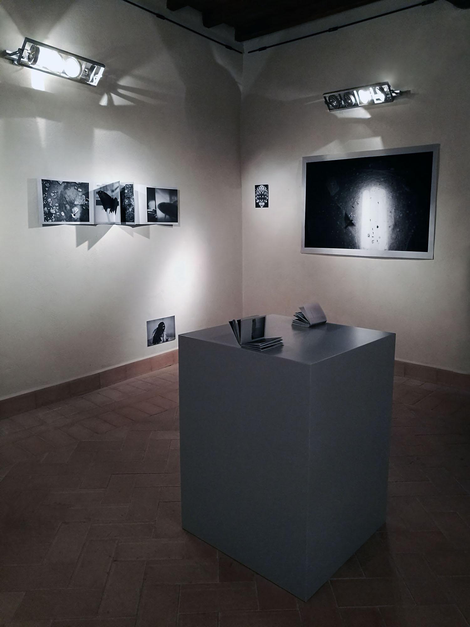 Mostra Castelnuovo 2016_06.jpg