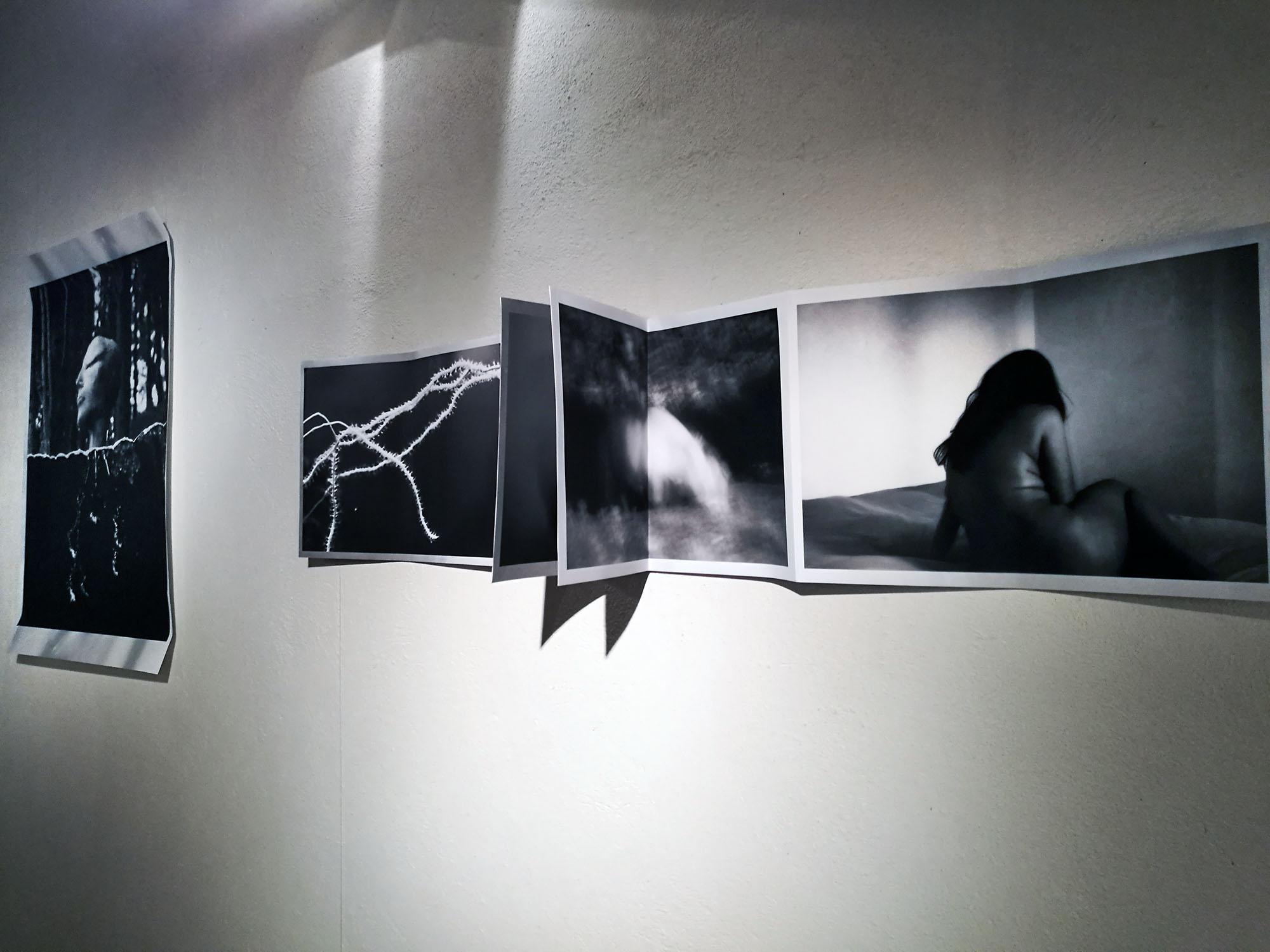 Mostra Castelnuovo 2016_05.jpg