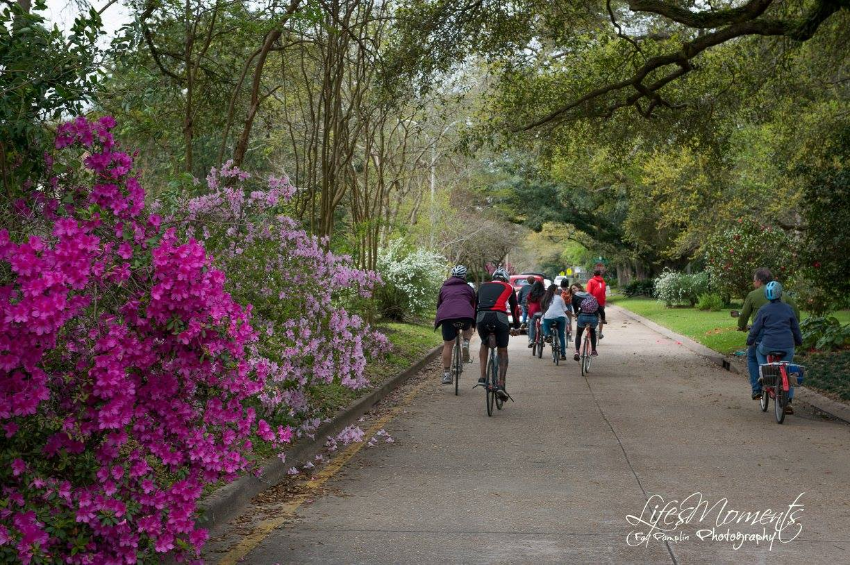AZALEA-TRAIL-JPG-FOR-FACEBOOK (1).jpg