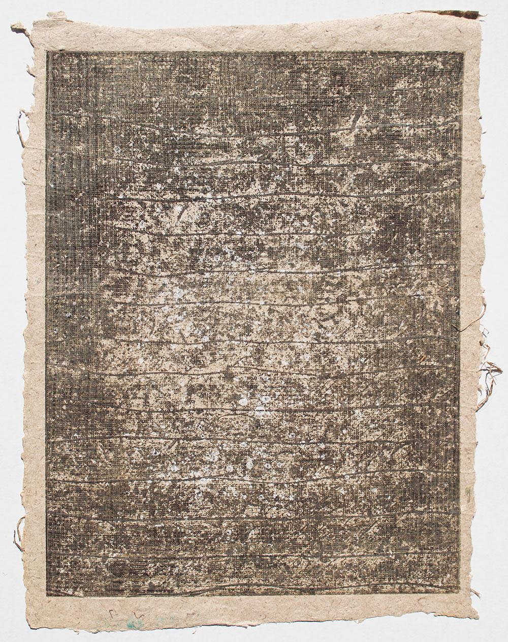 """Lichen on Dark Gray  37 x 27"""" $3,000."""