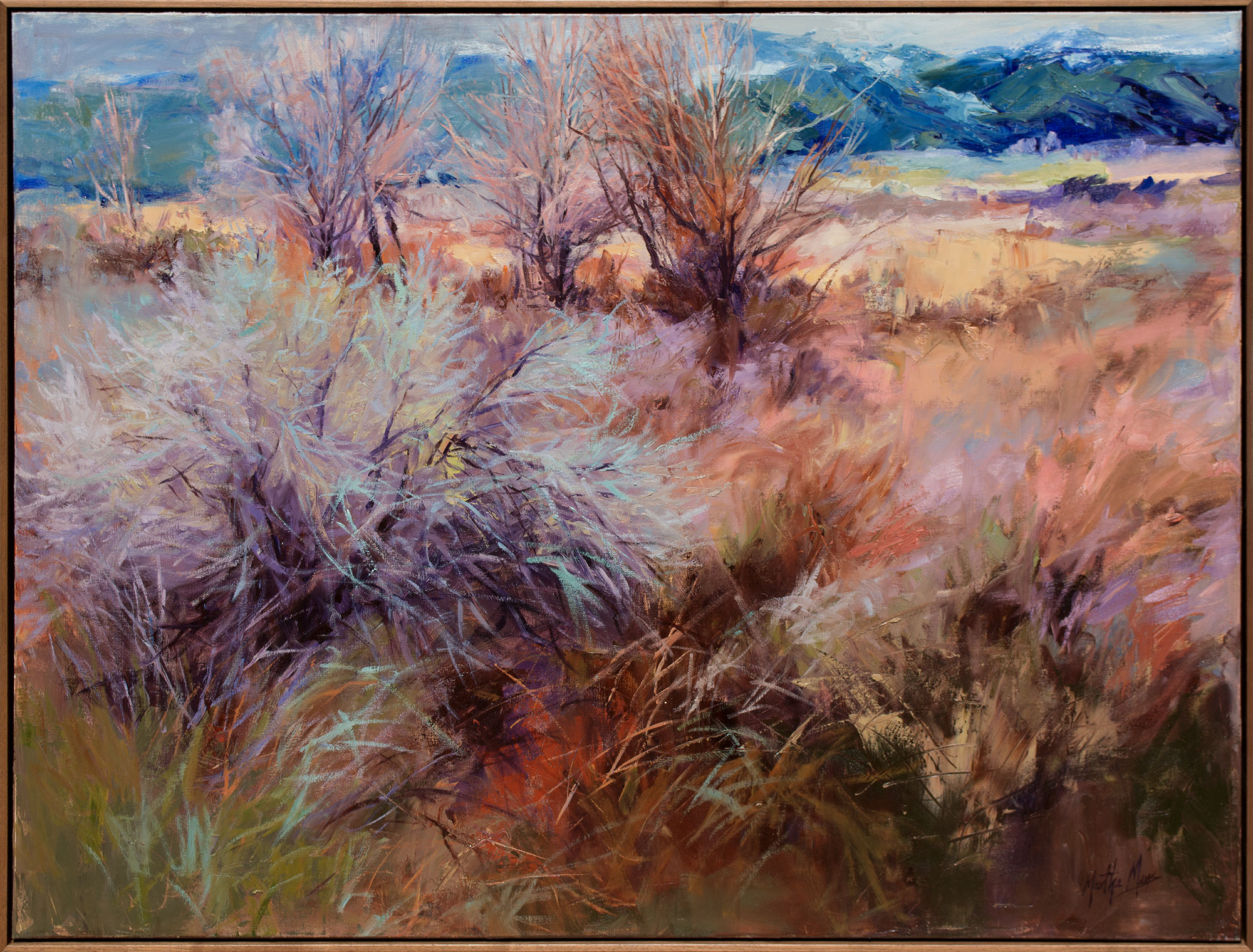 "Taos Textures, 37 x 49"" framed"