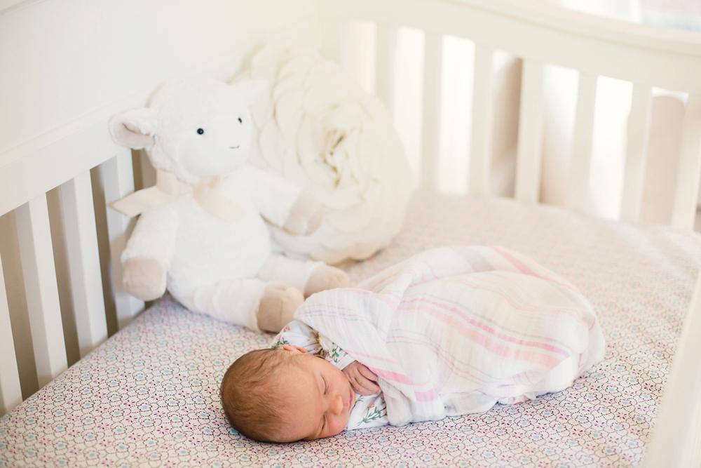 Cleveland Heights Ohio Newborn Photographer_0001.jpg