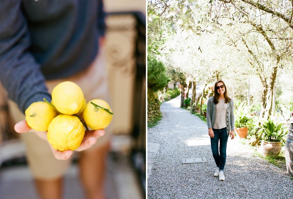 Cinque Terre Lemon Grove