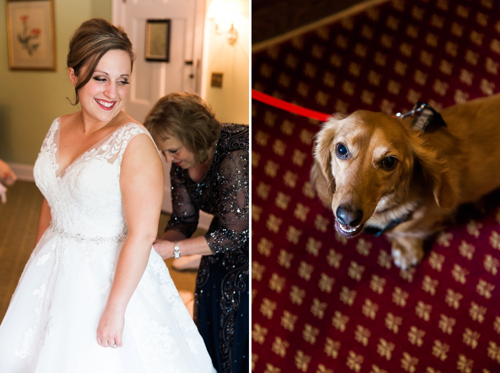Bride and Dog Wedding Photos