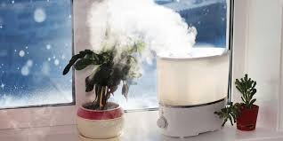 And if you don't have an hvac system or don't want to spend the money on fancy upgrades, use a humidifier in winter to keep the humidity levels in your home from dropping too low! It is good for your health as well!