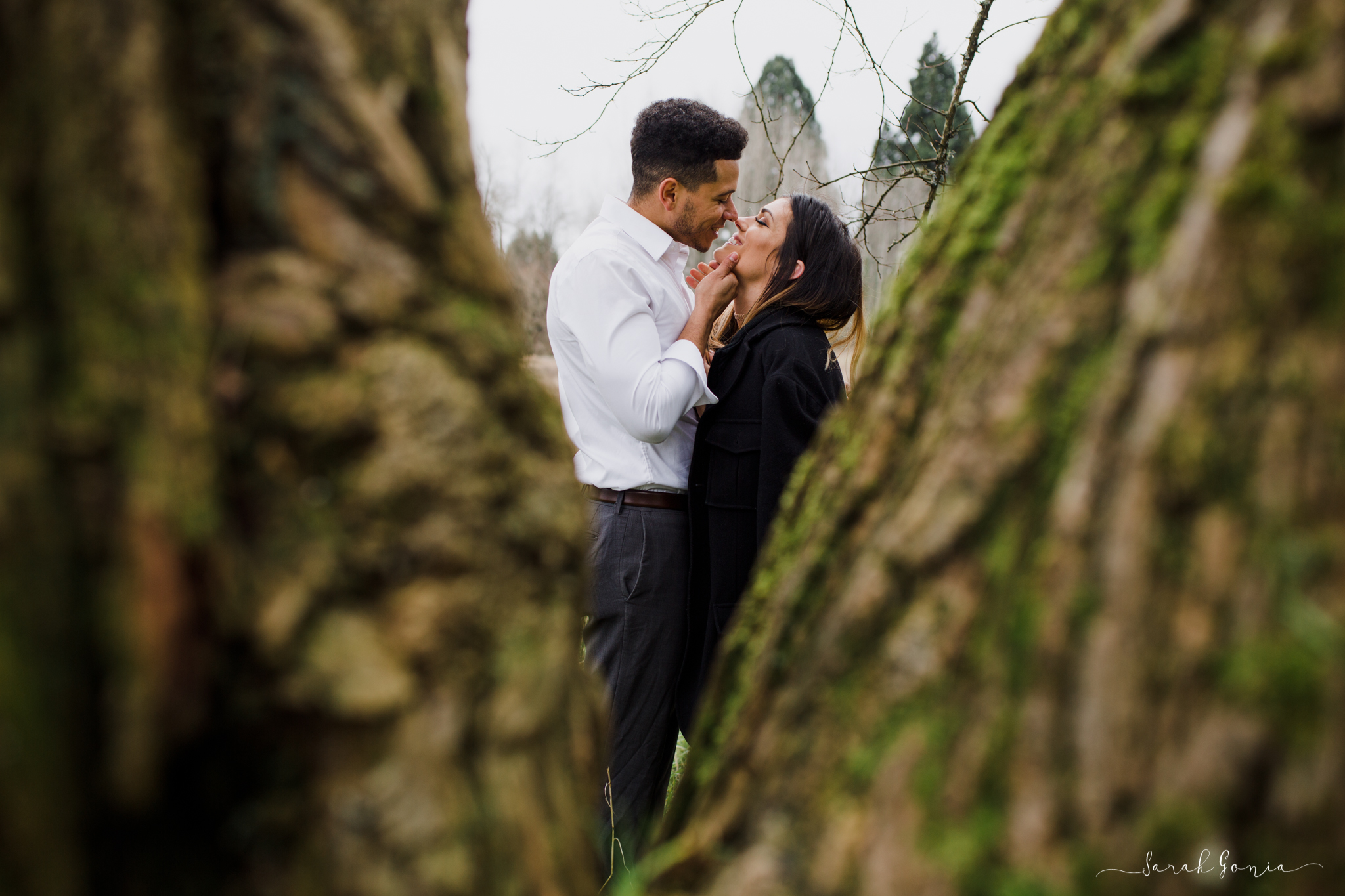 Olympia Photographer Engagement, Love Stories and Weddings Trees