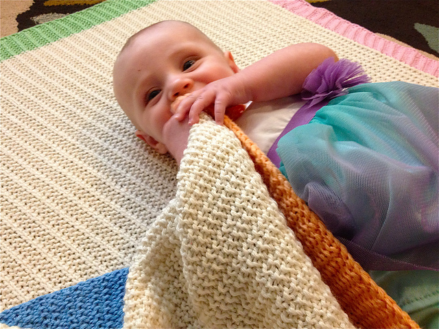 Farrowing House Baby Blanket