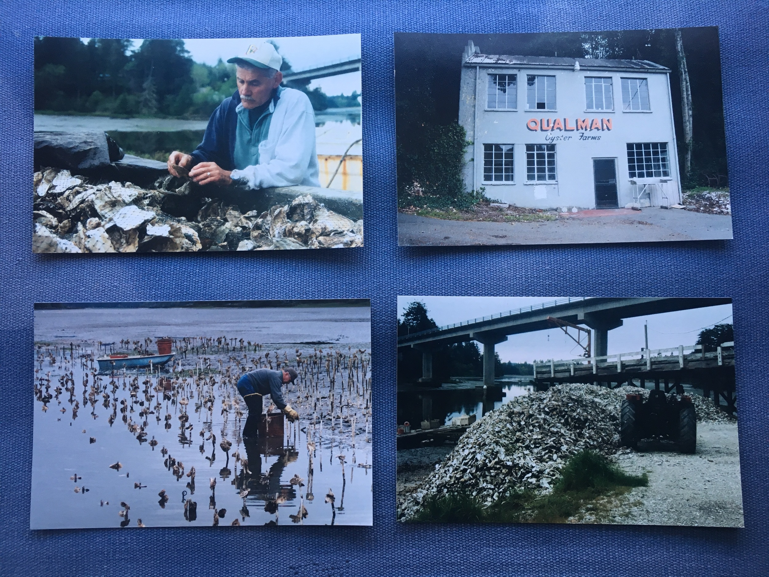 Qualman Oysters over the years