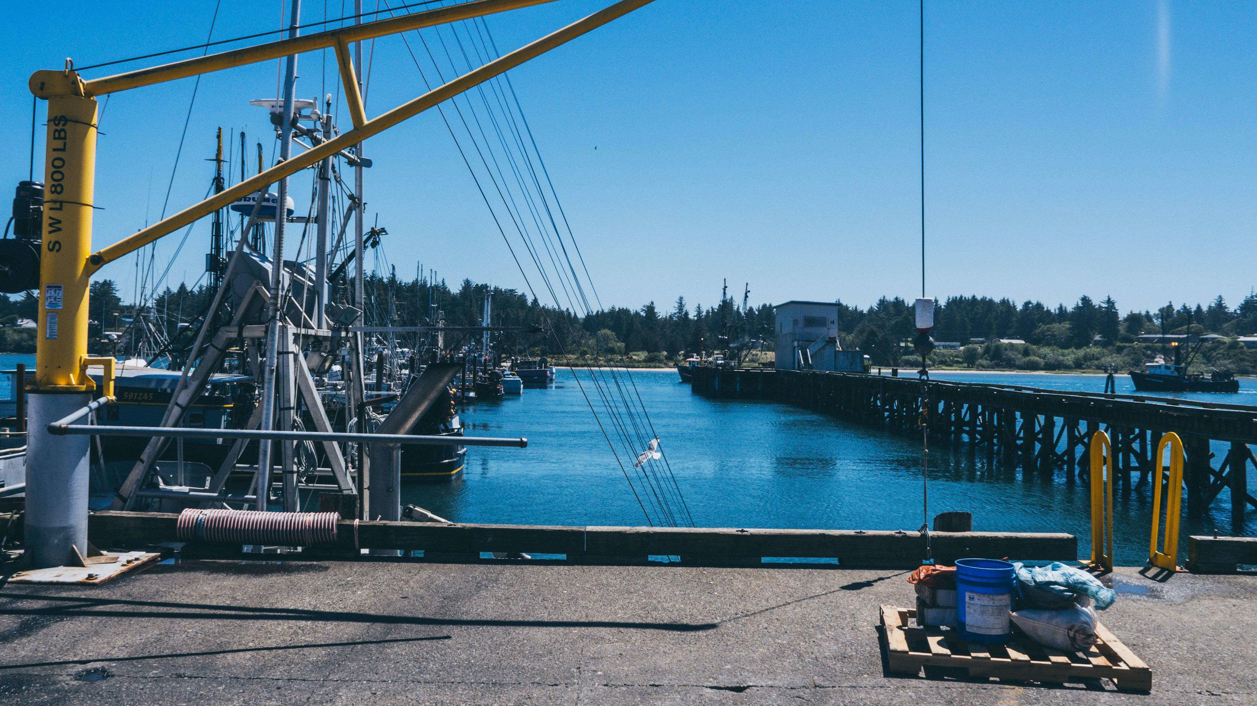 Long Fisheries Charleston oregon