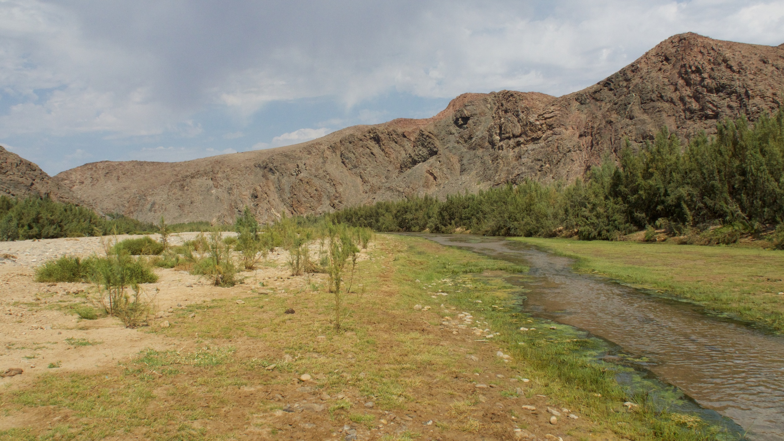 The ephemeral Hoarusib river, a few km west of Purros where the life giving water surfaces - sometimes!