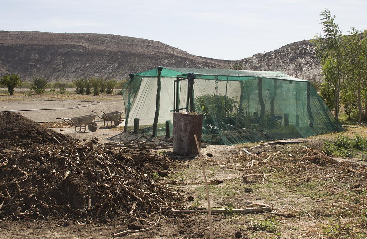 Composting at Warmquelle
