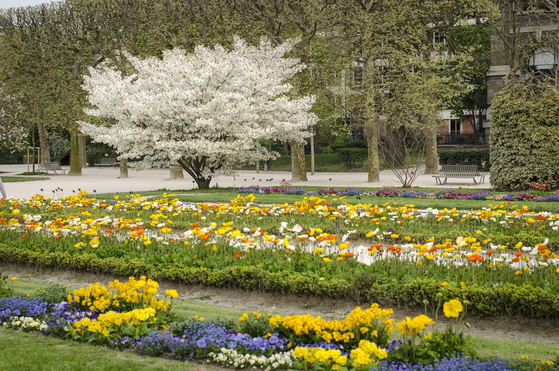Jardin des Plantes - Photography : Alexander J.E. Bradley - Nikon D7000 -Nikkor 50mm f1/4 - F/4 - 1/100 - ISO:100