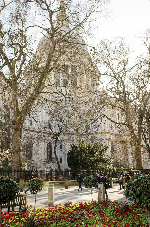 Saint Paul's Cathedral - PHOTO: ALEXANDER J.E. BRADLEY - NIKON D7100 - 24-70MM F/2.8 @ 24MM - F/6 - 1/100 -ISO 100