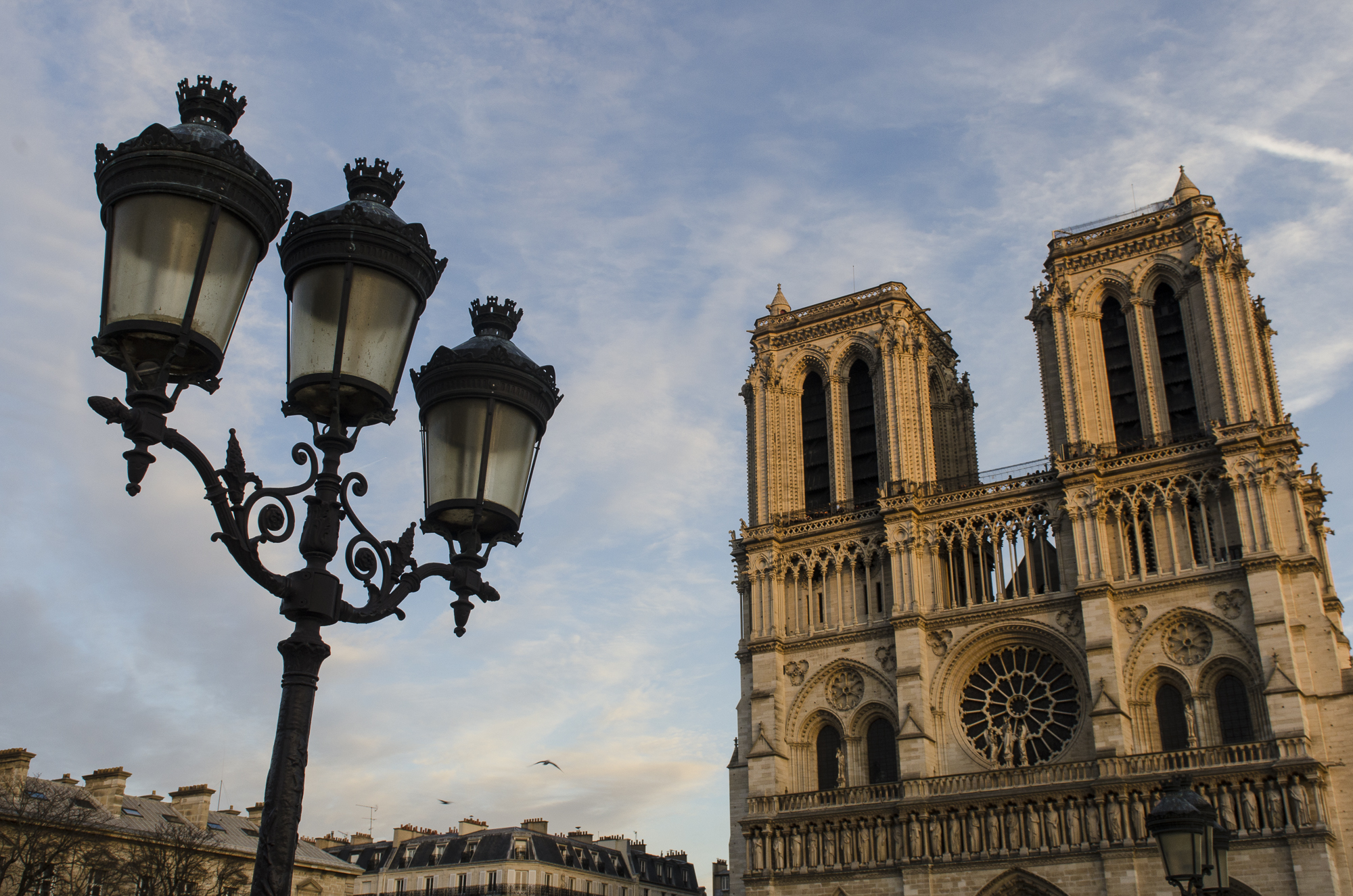 The lanterns fill the empty part of the sky and ballance the picture with Notre Dame on the right. Photo by Alexander J.E. Bradley.
