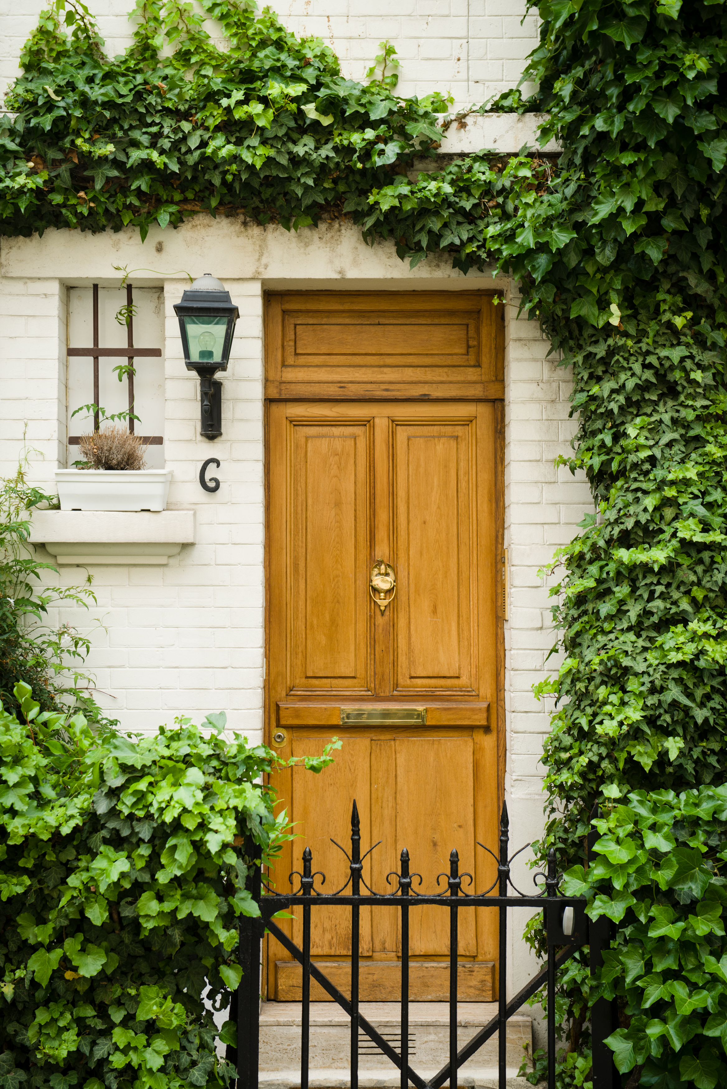 The vine branches frame the doorway as well as creating a sense of place by giving us an idea of the neighborhood. Photo by William Lounsbury.