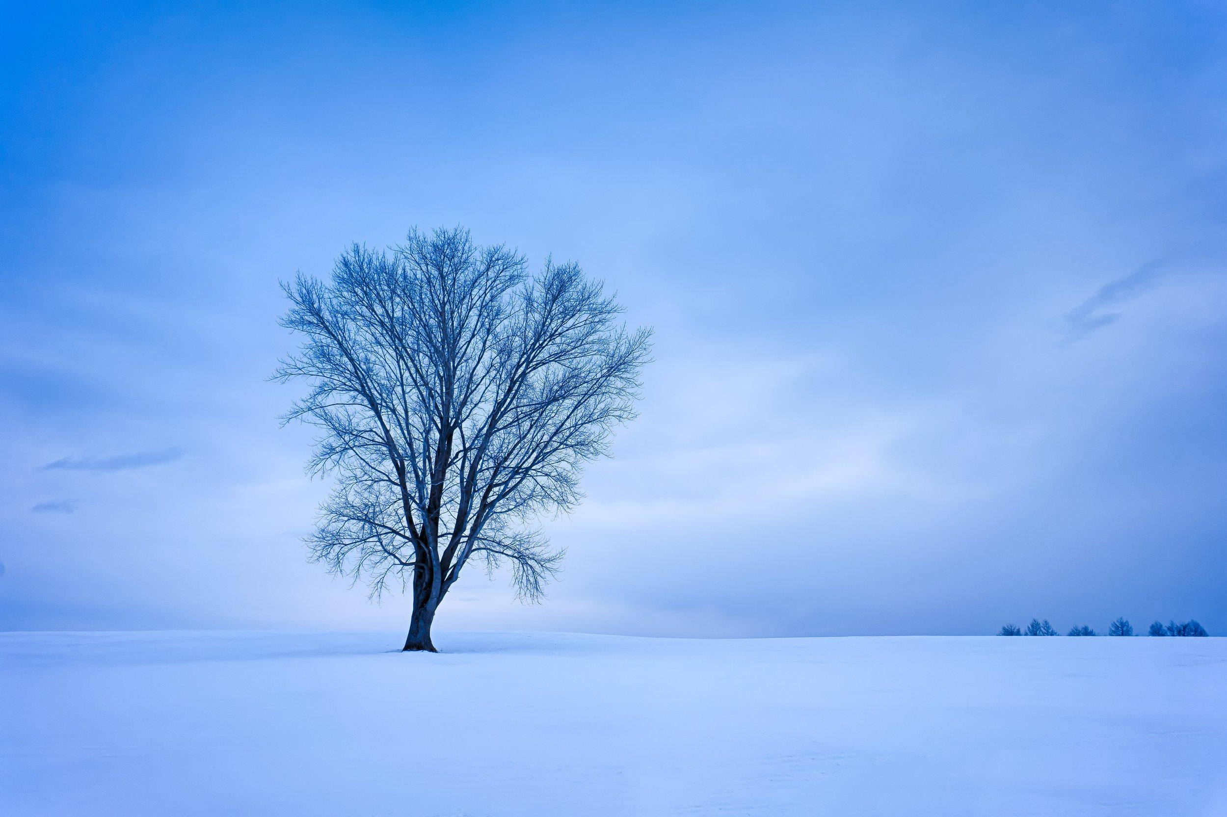 PHOTOGRAPHY: Andy Yee • Sony Sony a7R • E 10-18mm Ƒ/4 OSS @ 14MM • Ƒ/11 • bulb• ISO 80