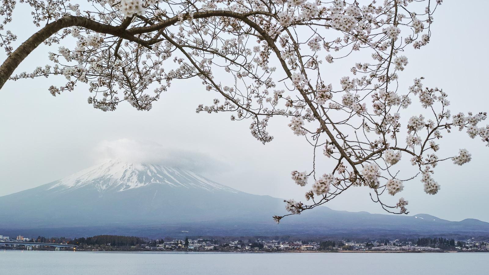 Mt. Fuji - Japan  PHOTOGRAPHY: Giovanni Piliarvu