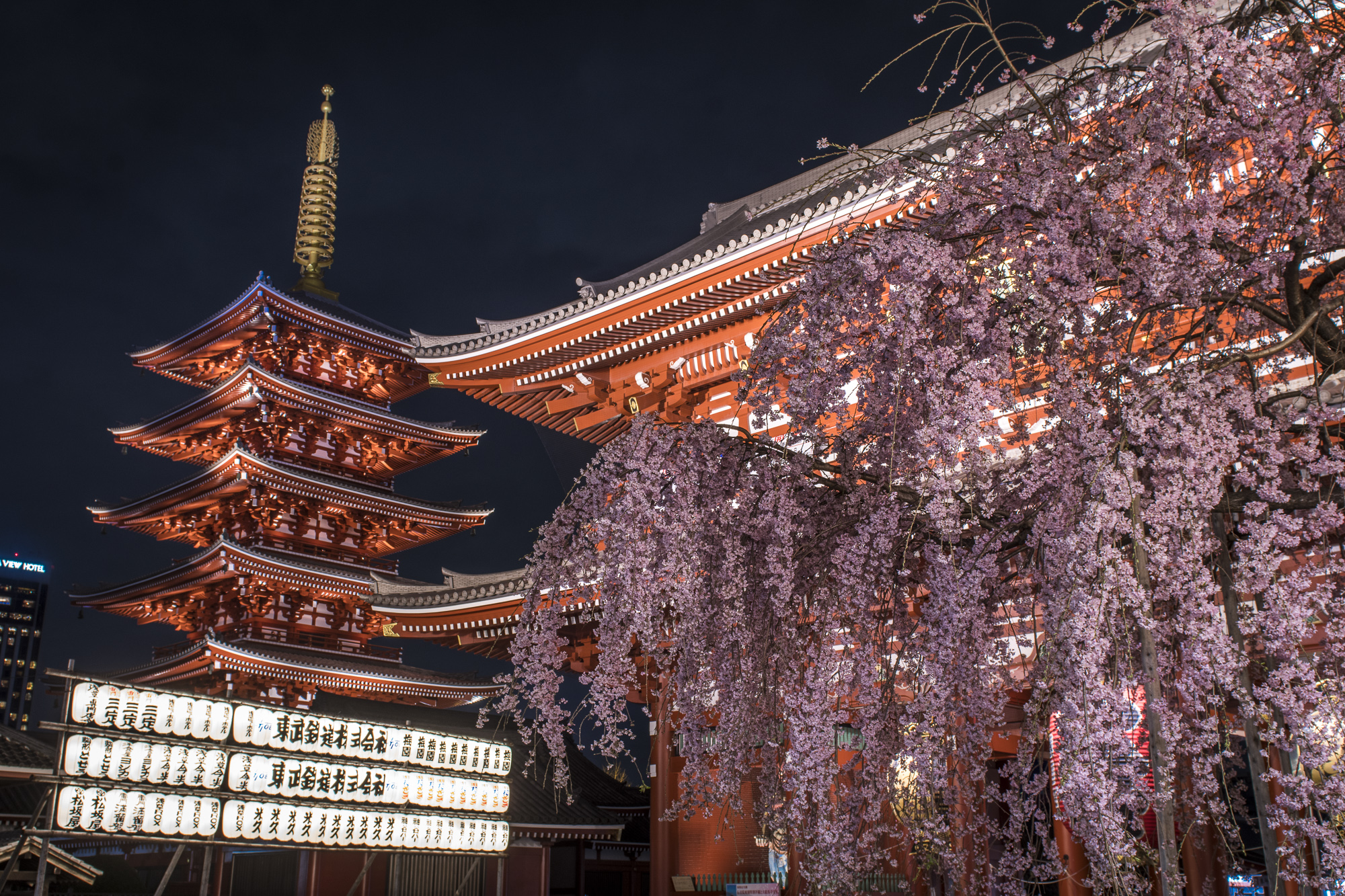 Senso-ji, Tokyo  PHOTOGRAPHY: ALEXANDER J.E. BRADLEY • NIKON D500 • AF-S NIKKOR 24-70MM Ƒ/2.8G ED @ 24MM • Ƒ/8 • 0.625sec • ISO 100