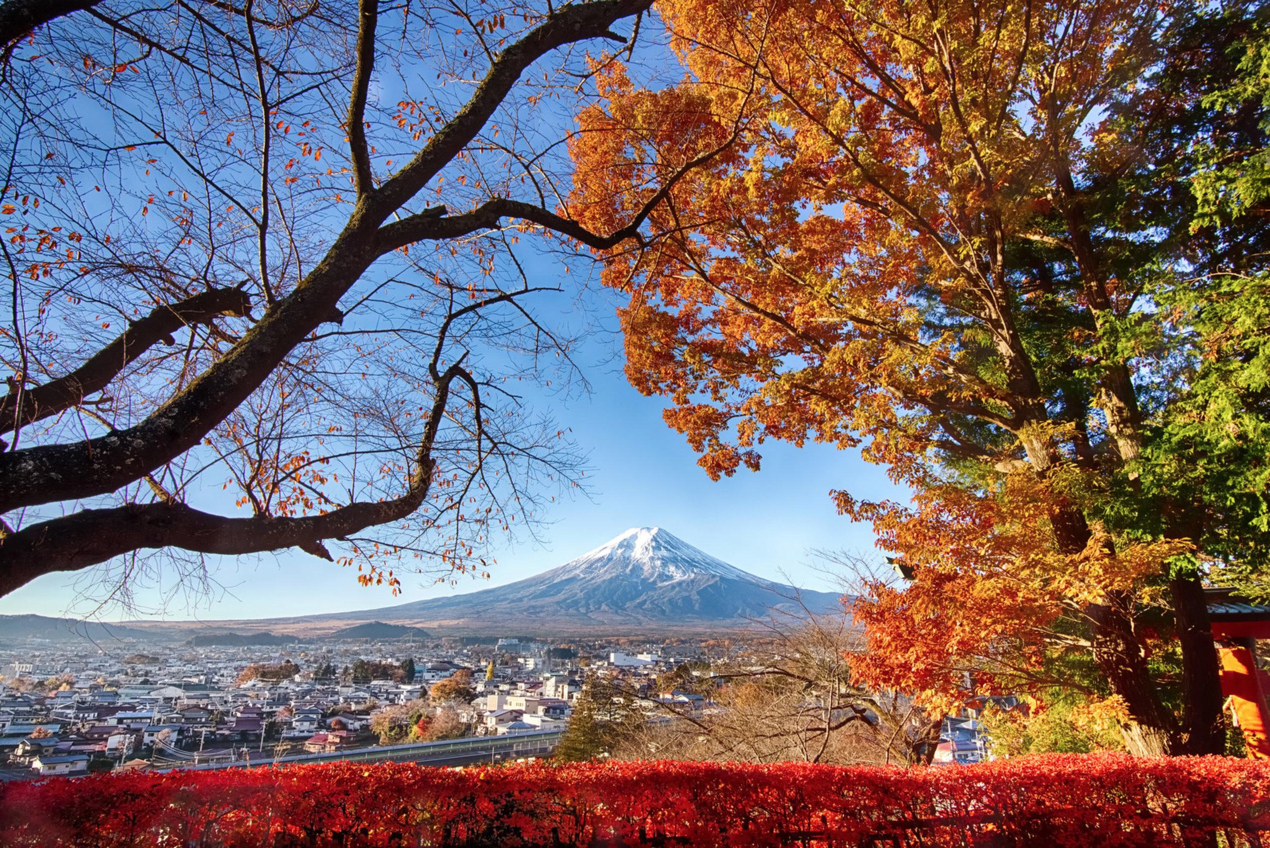 Mt-Fuji.jpg