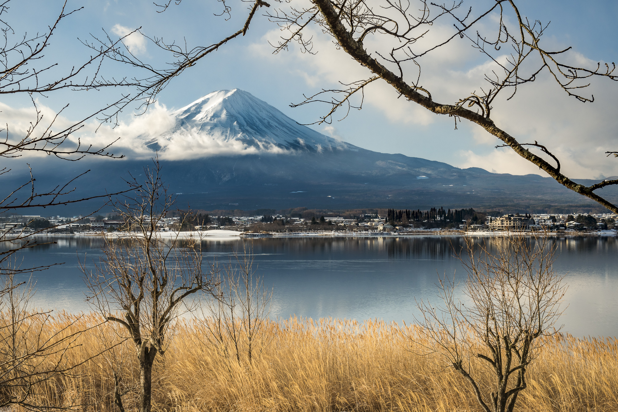 Mt Fuji Five Lakes