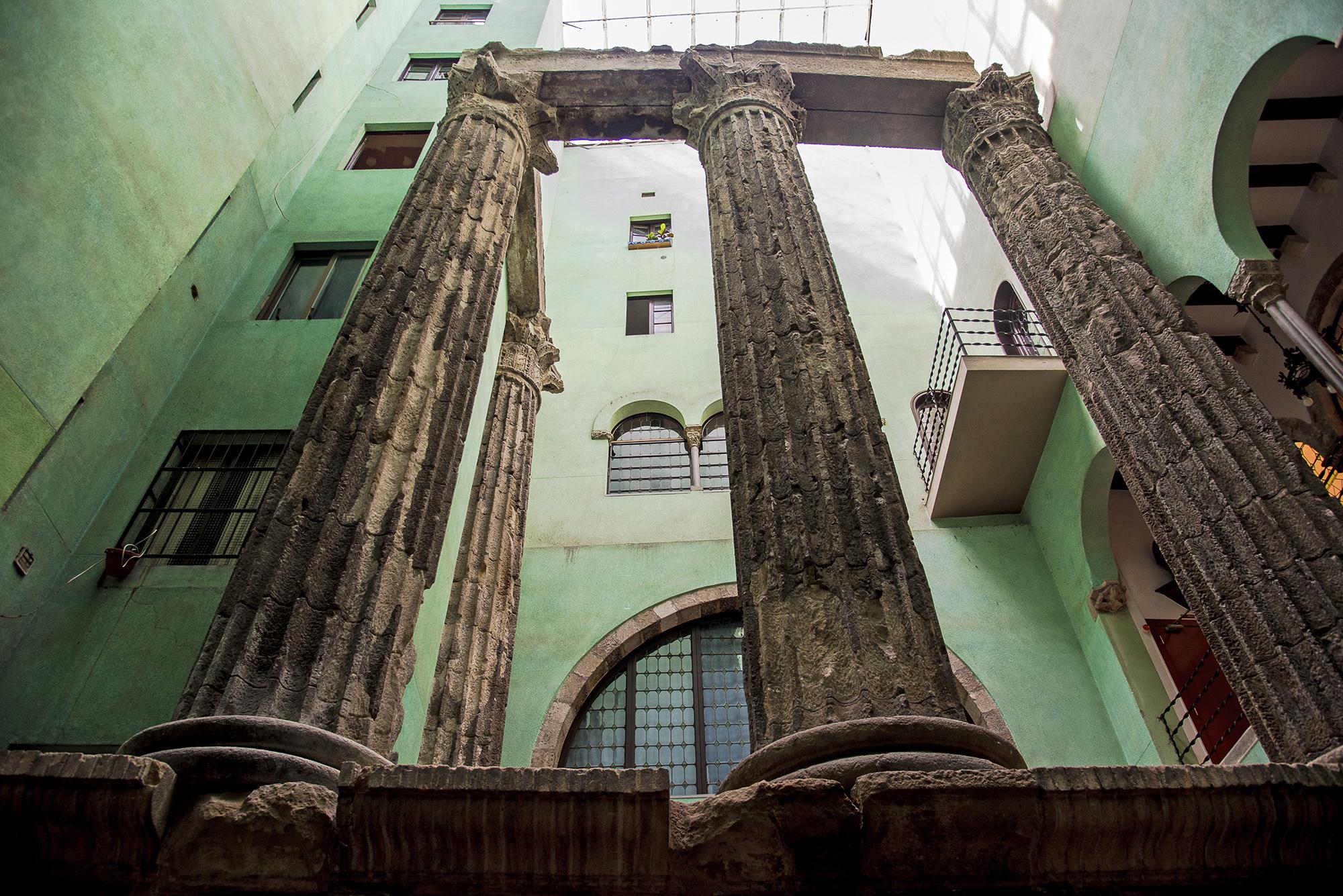 Barcelona-Delphine-006-aperture-tours.jpg