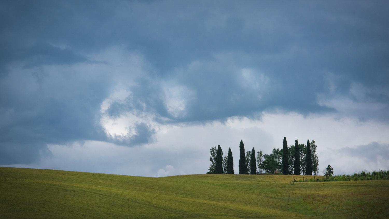Val d'Orcia  PHOTO: ANNA VOLPI • NIKON D750 • 105mm Ƒ/2.8 @ Ƒ/18 • 1/1600 • ISO 2000
