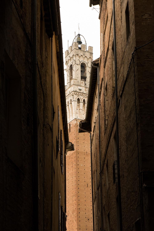 Piazza del Palio, Siena  PHOTO: ANNA VOLPI • NIKON D750 • 24-70mm Ƒ/2.8 @ 70mm • Ƒ/11 • 1/160 • ISO 2000