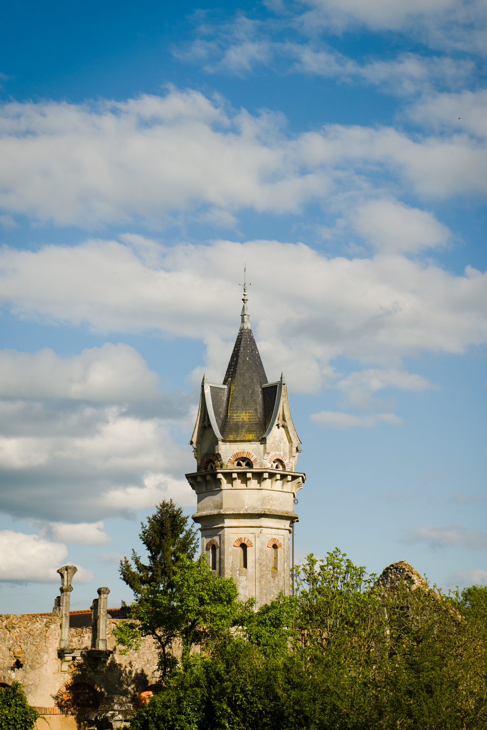 Loire Valley  PHOTOGRAPHY: William Lounsbury • NIKON D800 • AF-S NIKKOR 24-70MM F/2.8G ED @ 70MM • Ƒ/8 • 1/640 • ISO 200
