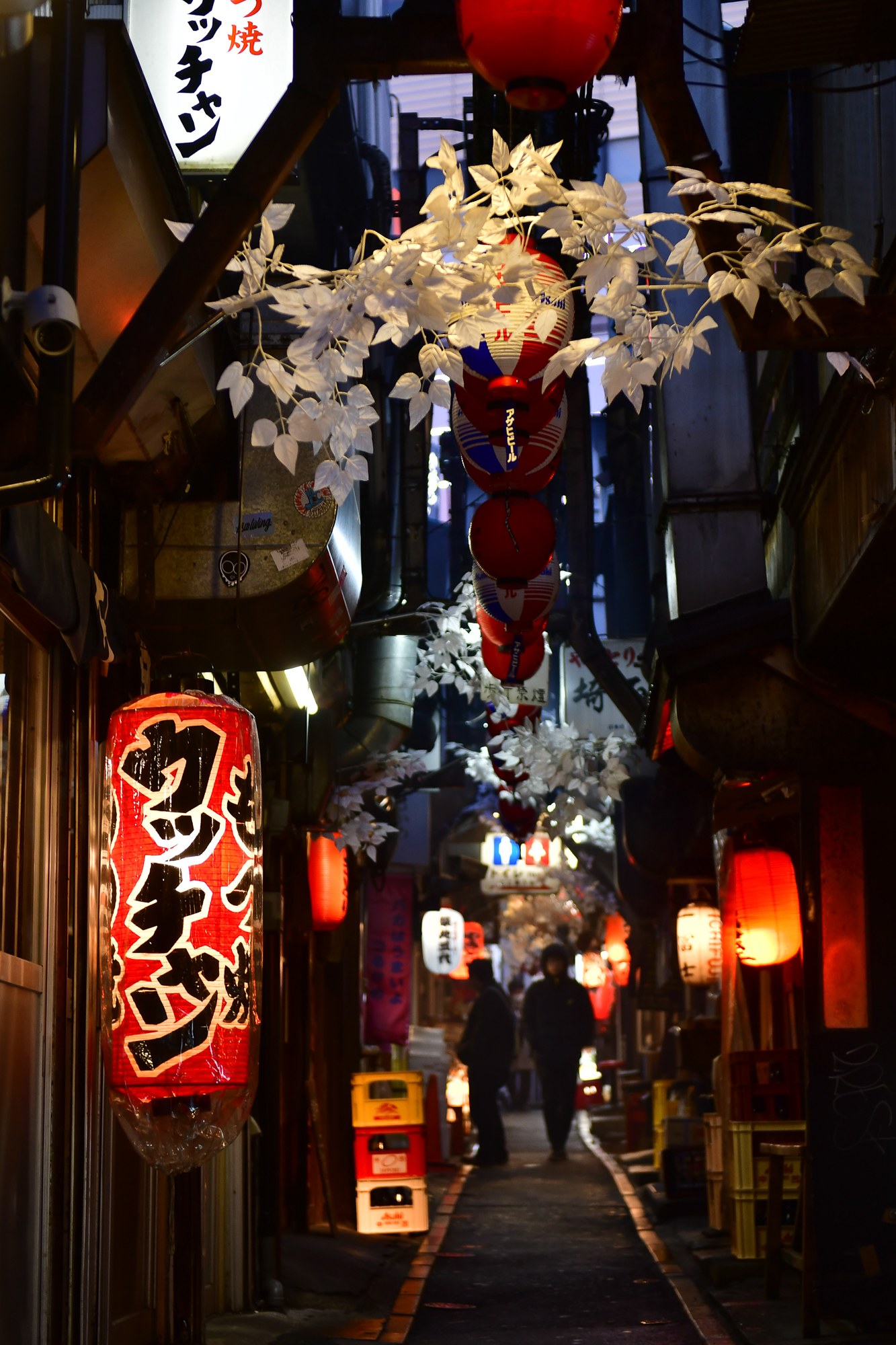 Omoide Yokocho (Piss Alley)  PHOTOGRAPHY: ALEXANDER J.E. BRADLEY • NIKON D500 • AF-S NIKKOR 24-70MM Ƒ/2.8G ED @ 48MM • Ƒ/2.8 • 1/60 • ISO 400