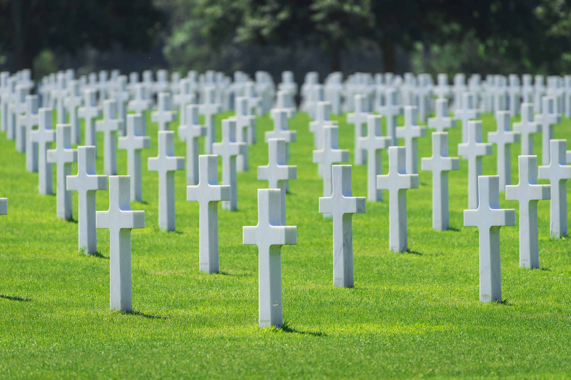 American Cemetary005-aperture-tours.jpg