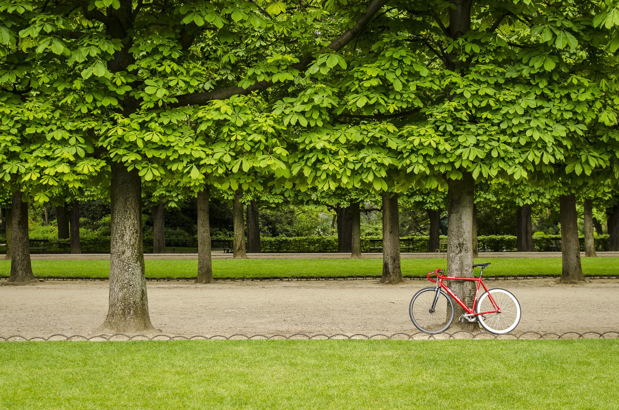 paris-photo-tour-008.jpg